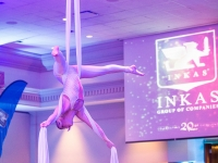 Corporate reception aerialist